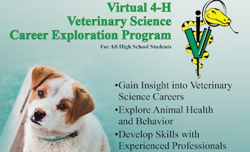 4-H Virtual Veterinary Science Career Exploration Program