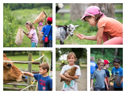 Summer Camp Open House at Fernbrook Farms Environmental Education Center
