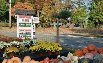 Fall Festival 2021-Whitman Farms-Morristown