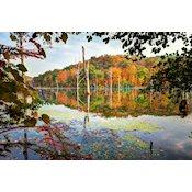 Long Pond Ironworks State Park