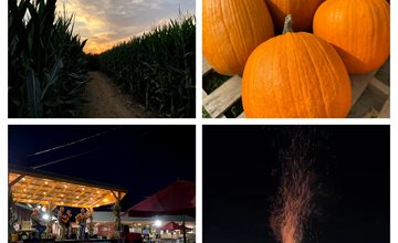 Harvest Moon Nights at Alstede Farms