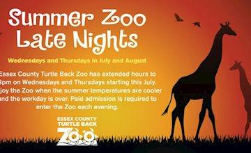 Summer Zoo Late Nights