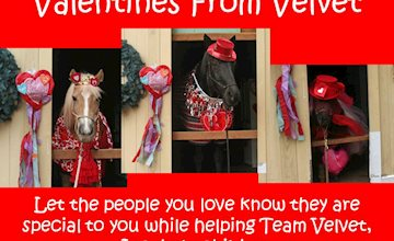 Virtual Valentines From Velvet
