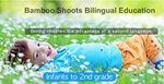 Bamboo Shoots Bilingual Preschool
