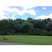 Saddle River County Park - Rochelle Park Area
