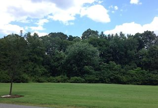 Saddle River County Park - Rochelle Park Area