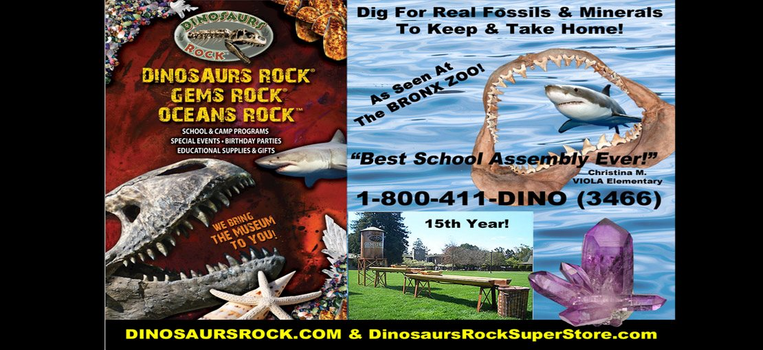3 cool themes - DINOSAURS ROCK, GEMS ROCK or OCEANS ROCK
