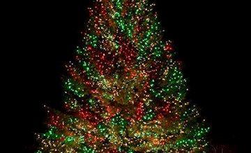 Wyckoff YMCA Tree Lighting-Free Event