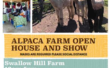 Swallow Hill Farm Alpacas Open House and Alpaca Show in Hillsborough, NJ