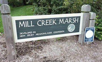 Mill Creek Marsh Fall Nature Walk