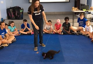 St. Hubert's Kids' Critter Camp in Madison, NJ