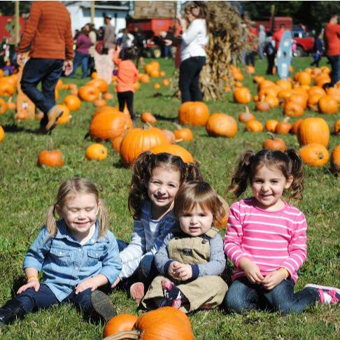 Fall Harvest Weekends at Von Thun Farms