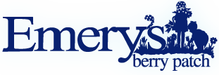 Fall Family Fun at Emery's Berry Patch