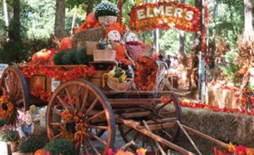Trick-Or-Treat Weekends-Storybook Land-Egg Harbor Township