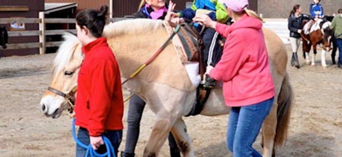 Pony Power Therapy