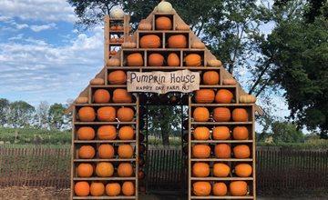 Fall Harvest 2021-Happy Day Farm-Manalapan
