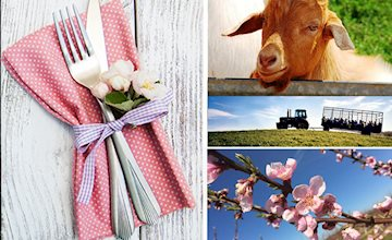 Farm to Table Mother's Day Brunch at Alstede Farms