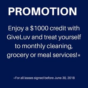 GiveLuv Promotion
