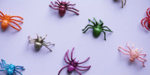 plastic bugs on a purple background