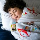 Buyers' Guide To Weighted Blankets