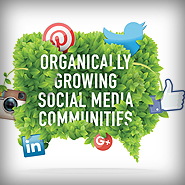 Organically Growing Social Media Communities