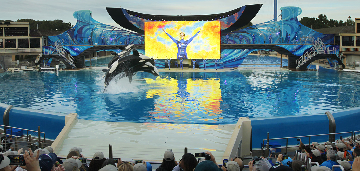 Pricing Lessons from Sea World