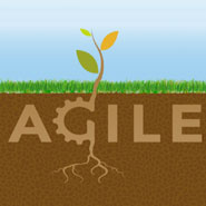 Getting Back to the Roots of Agile