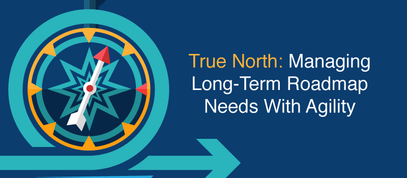 True North: Managing Long-Term Roadmap Needs with Agility