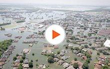 Hurricane Harvey Disaster Response