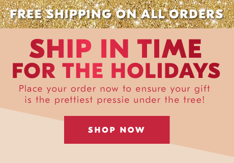 SHIP IN TIME FOR THE HOLIDAYS