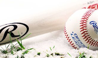 How to Choose the Best Wood Baseball Bats For Your Game | Source For Sports