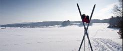 Choisir ses bâtons de ski | La Source du Sport