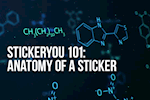 StickerYou 101: The Anatomy of a Sticker